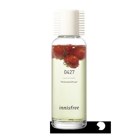 Perfumed Diffuser [0427 Cactus]